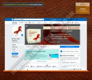 Скриншот - Лого и обложка для Фейсбука к товару Лошадиный бальзам 001